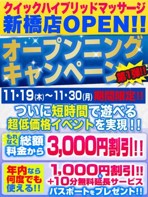 新橋オープニングキャンペーングループ店用-300-400-2