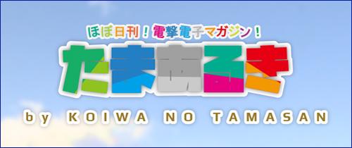 500-210-tamaaruki