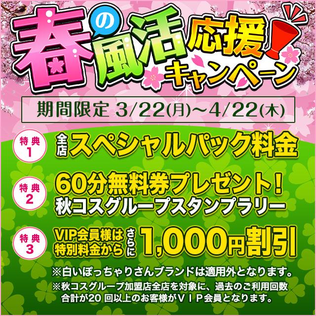 春の風活キャンペーン_640‐640