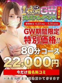 480-640_GW_特別価格_小岩ハイブリ